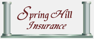 Spring Hill Insurance Group